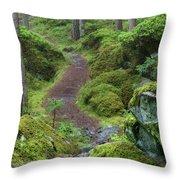 Fairytale Trail Throw Pillow