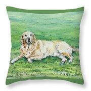 Faithful Throw Pillow
