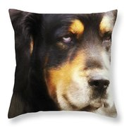 Faithful Throw Pillow