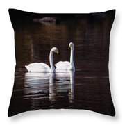 Faithfulness Throw Pillow