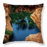 Falcon And The Desert... Throw Pillow