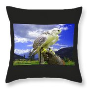 Falcon Being Trained H A Throw Pillow