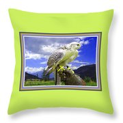 Falcon Being Trained H A With Decorative Ornate Printed Frame. Throw Pillow