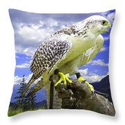 Falcon Being Trained H B Throw Pillow