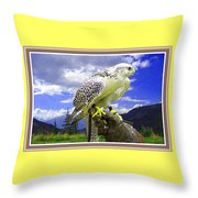 Falcon Being Trained H B With Decorative Ornate Printed Frame. Throw Pillow