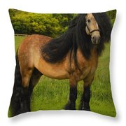 Falcon C3 Throw Pillow