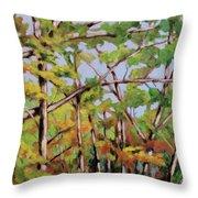 Fall 2 Throw Pillow