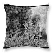 Fall 2015 102 Throw Pillow