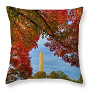 Fall 2015 Washington Dc Throw Pillow
