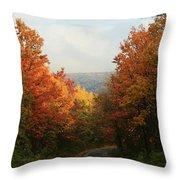 Fall Along Greenland Road Throw Pillow