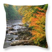 Fall Along The Cranberry River Throw Pillow by Thomas R Fletcher