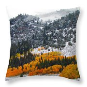 Fall And Winter Collide  Throw Pillow