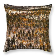 Fall And Winter On The Same Day Throw Pillow