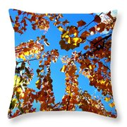 Fall Apricot Leaves Throw Pillow