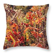 Fall Around  Throw Pillow