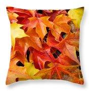 Fall Art Prints Red Orange Yellow Autumn Leaves Baslee Troutman Throw Pillow