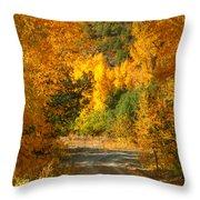 Fall Aspen Trail Throw Pillow