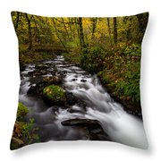 Fall At Bridal Veil Creek Throw Pillow