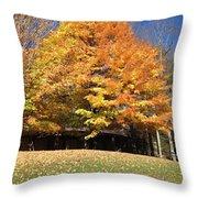 Fall At Kanuga Throw Pillow