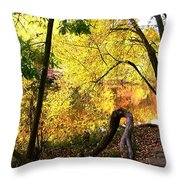 Fall At Lincoln Lake	 Throw Pillow