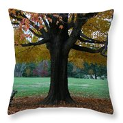 Fall At Maymont Throw Pillow