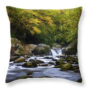 Fall At Midnight Hole Throw Pillow