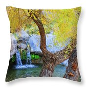 Fall At Murray Falls I Throw Pillow