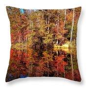 Fall At Table Rock Throw Pillow
