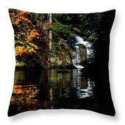 Fall At The Falls Throw Pillow