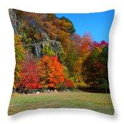 Fall At The Hook Throw Pillow
