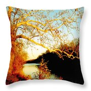 Fall At The Raritan River In New Jersey Throw Pillow