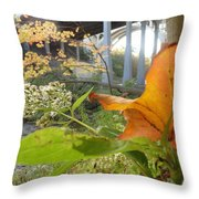 Fall At The River Throw Pillow