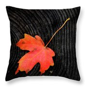 Fall Autumn Leaf On Old Weathered Wood Stump From A Tree Throw Pillow