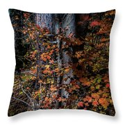 Fall Beauty Throw Pillow