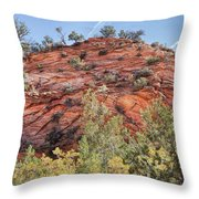 Fall Begins In Zion Throw Pillow