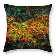 Fall Begins Throw Pillow