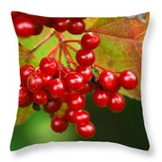 Fall Berries 2 Throw Pillow