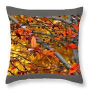 Fall Berries II Throw Pillow