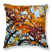 Fall Berries Throw Pillow