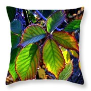 Fall Blackberry Throw Pillow