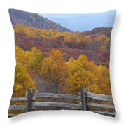 Fall Blend Throw Pillow