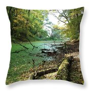 Fall By A River Throw Pillow