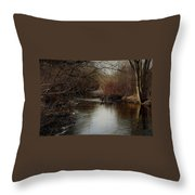 Fall Calm Throw Pillow