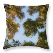 Fall Canopy In Virginia Throw Pillow