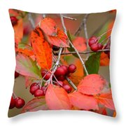 Fall Color 1 Throw Pillow