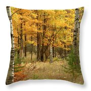Fall Color 12 Throw Pillow