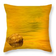 Fall Color Abstract Throw Pillow