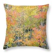 Fall Color At North Lake Throw Pillow