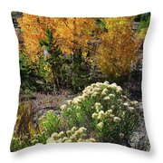 Fall Color Comes To Dillon Reservoir Throw Pillow