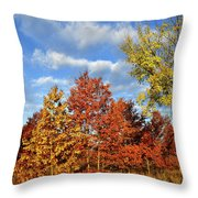 Fall Color Comes To Oak Trees Along Route 31 Throw Pillow